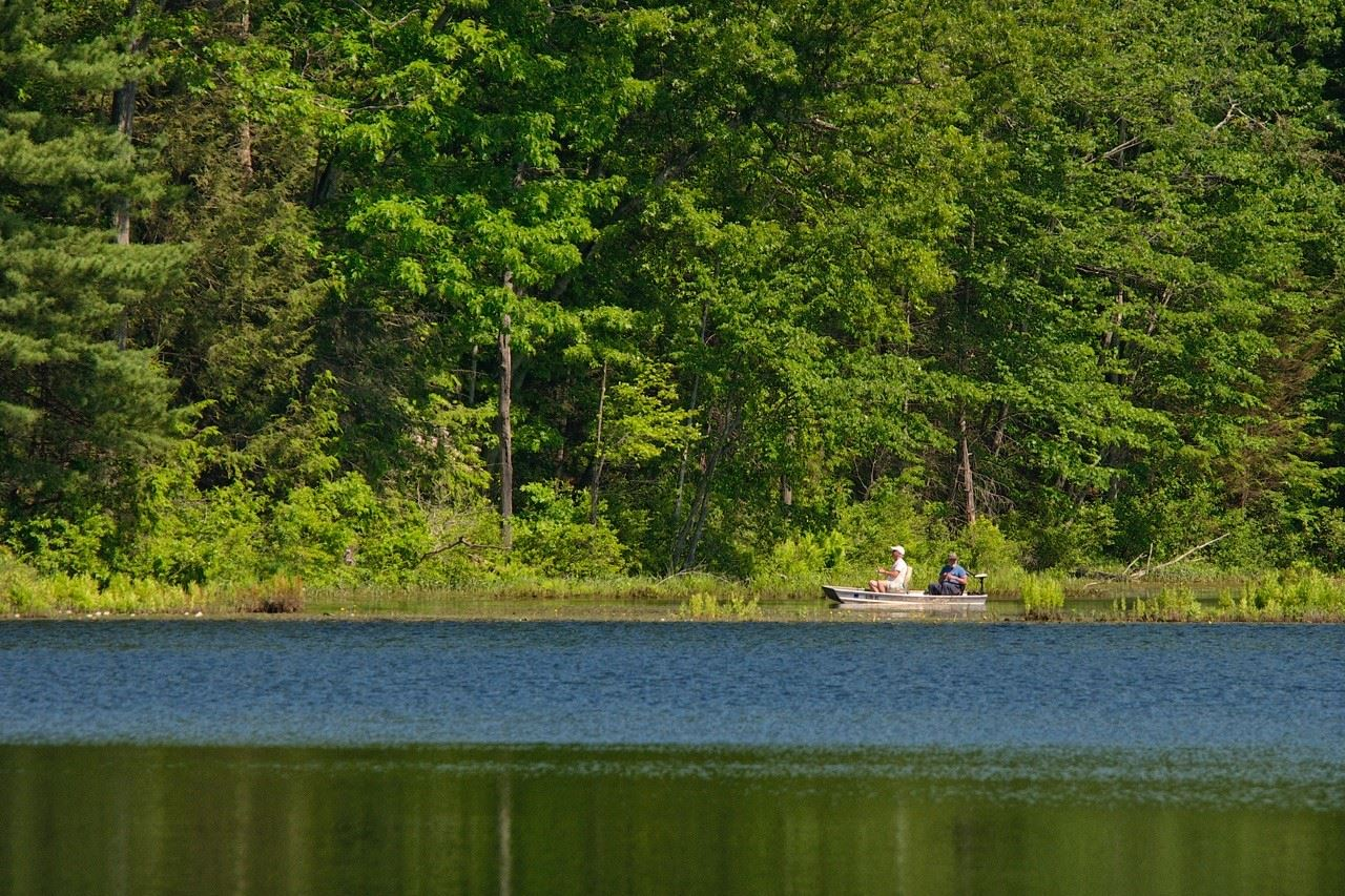 Fishing in Heald Pond